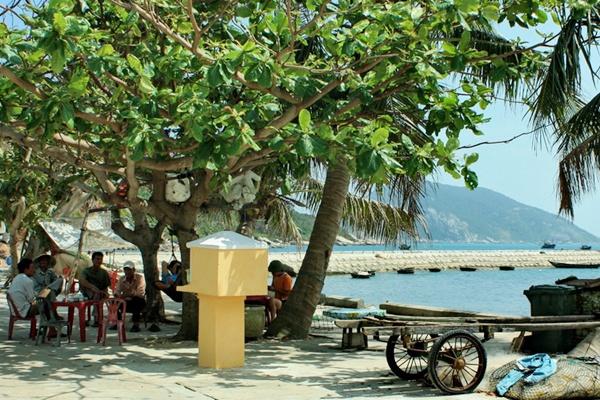 Bãi Lãng - Cù Lao Chàm Tour Cù Lao Chàm từ Huế